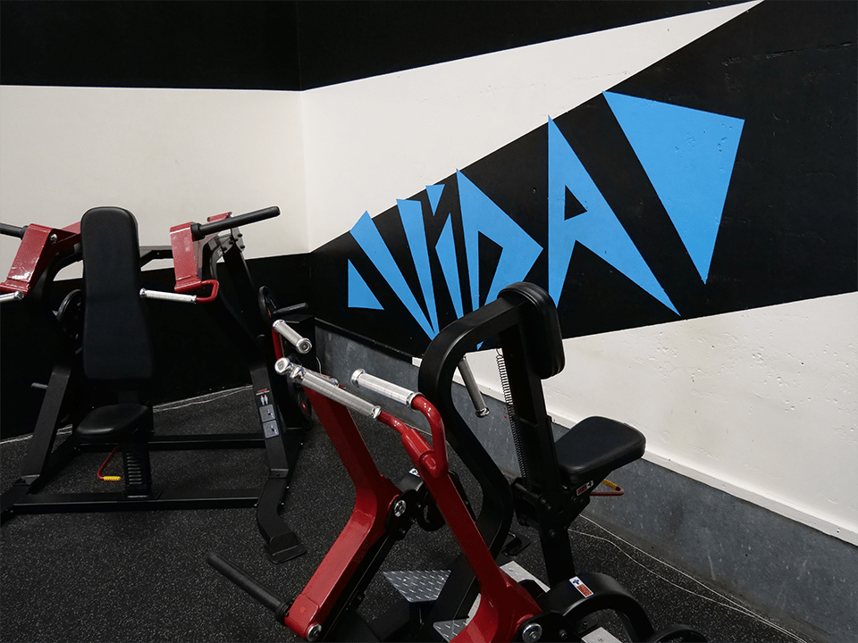Gym machines at Vida Health and Fitness