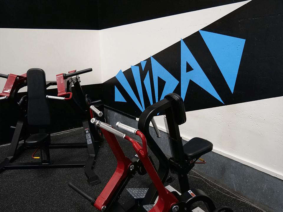 Gym machines at Vida Health and Fitness