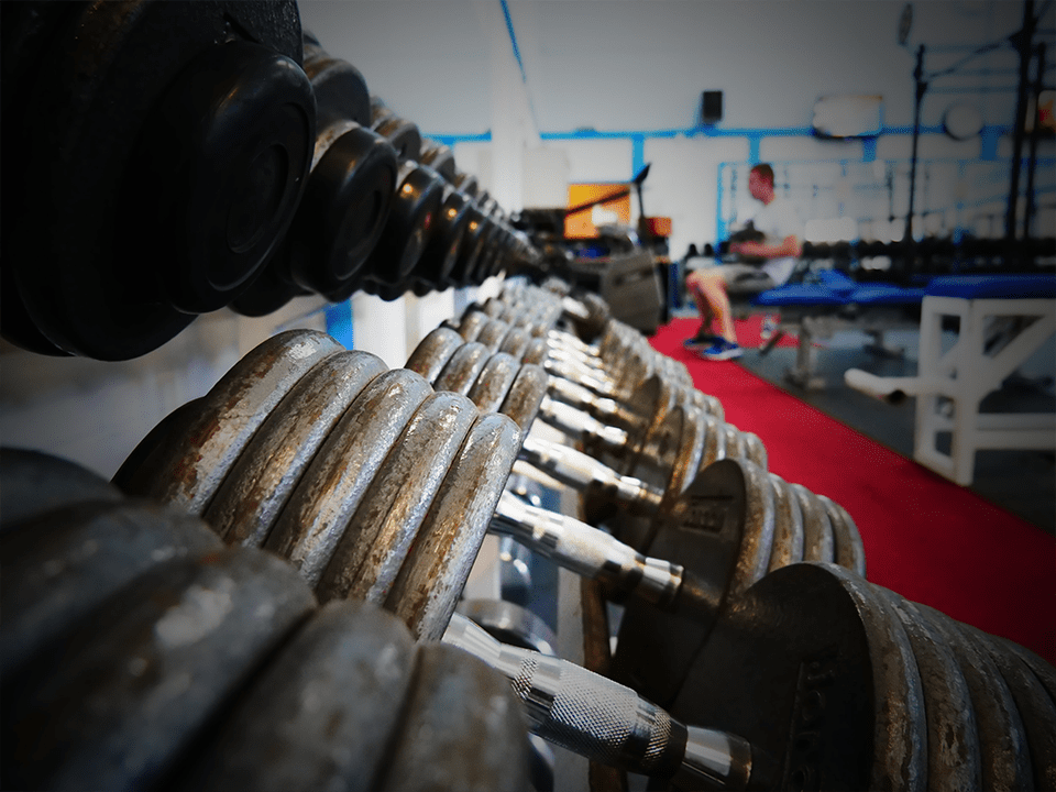 Heavy metal free weights at Vida Health and Fitness