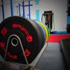 Vida Health and Fitness powerlifting plates